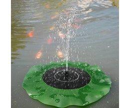 Lily-Brunnen In Dem Teich