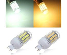 Energiespar-Licht