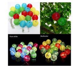 Chinesische Lampions Für Festivals In 2 Farben