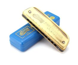 Blues Harmonica C Dickere 10Gaten
