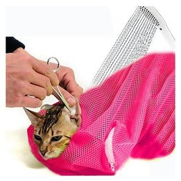 Cat Grooming & Care