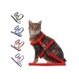 Cat Leads & Collars