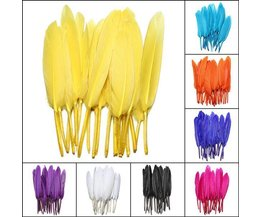20 Colored Feathers