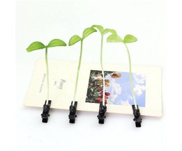Cute Hair Clip With Green Plants The