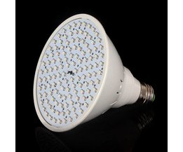 LED Lamp For Greenhouse Lighting With Red And Blue Light