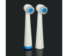 2 Brush For PROORAL