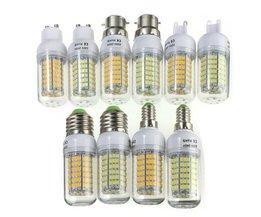 LED Fitting Multiple Species