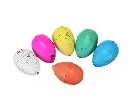Magic Dino Egg Toys 6 Pieces
