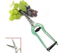 Pruning Scissors For Fine Pruning Work
