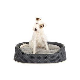 Dog Beds & Baskets