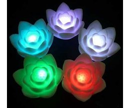 Nightlight Colorful Flower