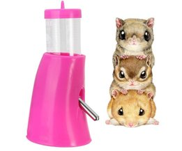 Water Bottle Hamster