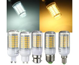 LED Fitting Multiple Species