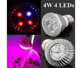E27 LED Bulb 4W Plants