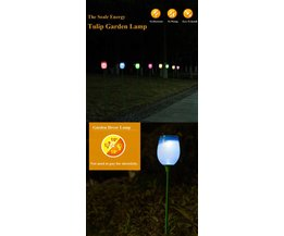 Garden Lamps LED With Tulip Shape