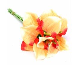 Bouquet Nep
