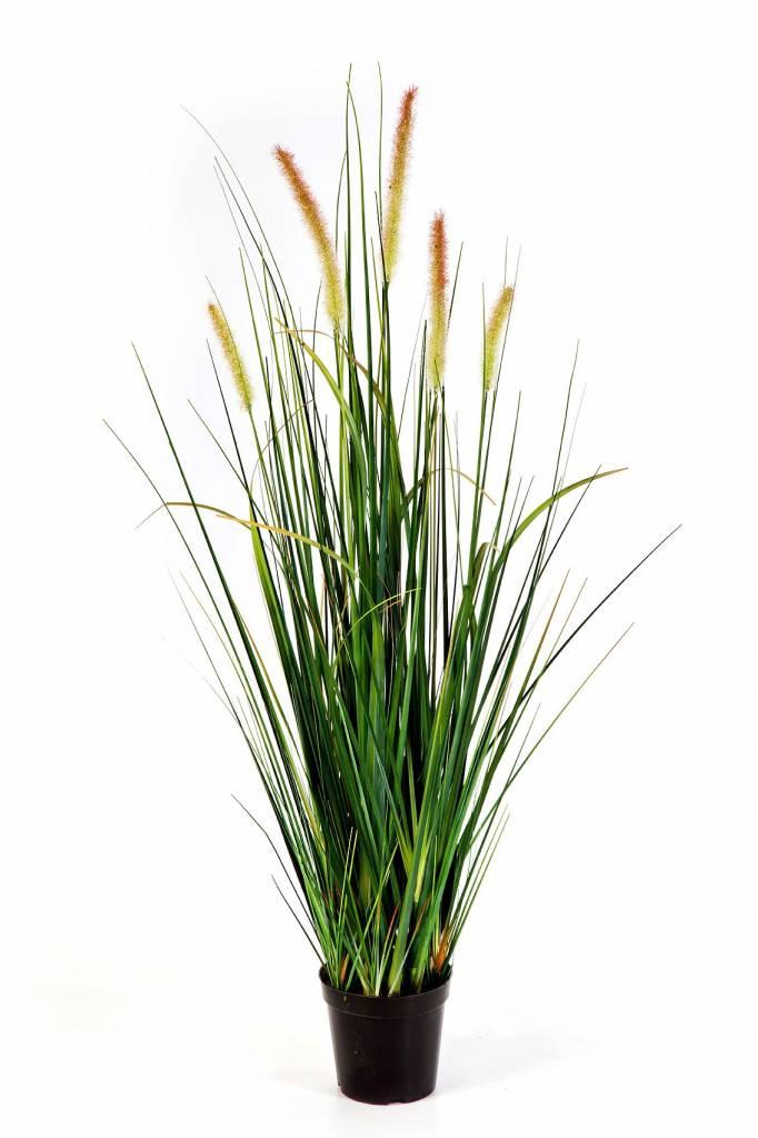 foxtail wild grass kunstplant eenvoudig en snel online bestellen. Black Bedroom Furniture Sets. Home Design Ideas