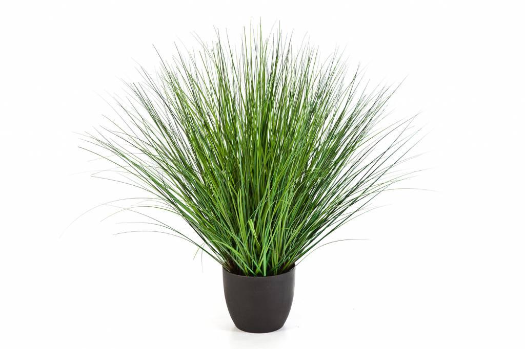 fountain onion grass kunstplant eenvoudig en snel online bestellen. Black Bedroom Furniture Sets. Home Design Ideas