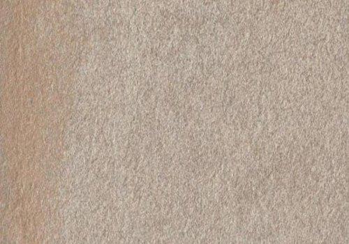Casalgrande Padana vloertegel AMAZZONIA Dragon Brown 60x60 cm - 10,5 mm Nat.