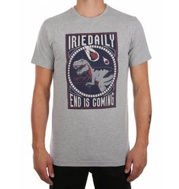 Iriedaily END IS COMING TEE grey-mel