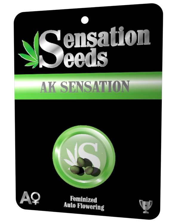 AK Sensation - Feminizada Autofloreciente