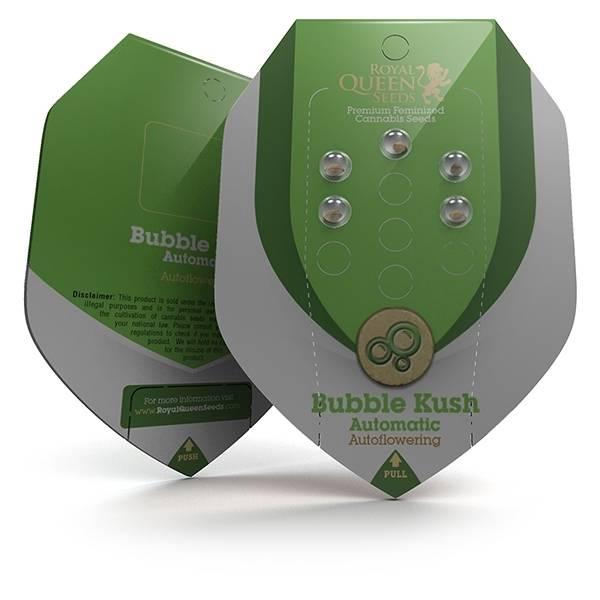 Bubble Kush Auto