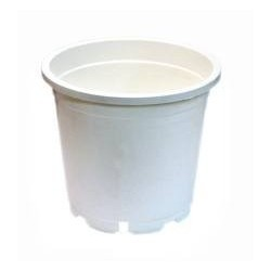 Round White Plant Pot (Various)