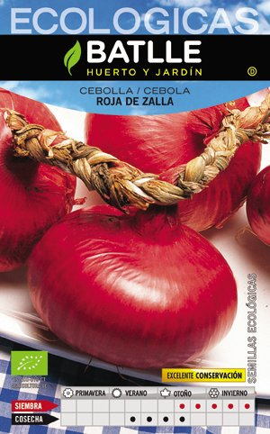 Batlle Red Onion from Zalla