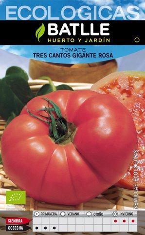 Batlle Tomate Tres Cantos Gigante Rosa