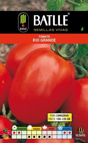 Batlle Tomate Río Grande