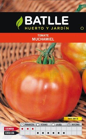 Batlle Tomate Muchamiel
