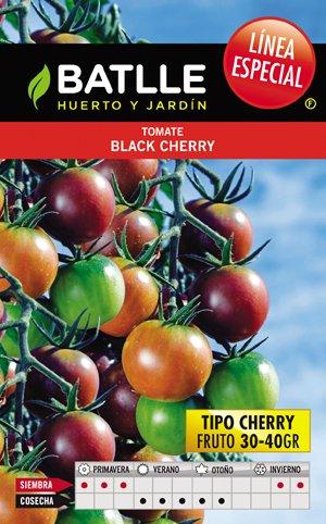 Black Cherry Tomato Batlle