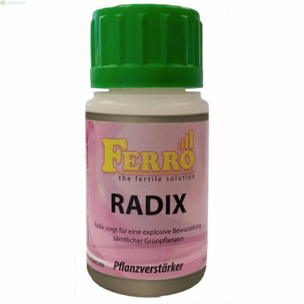 Ferro Radix 100ml