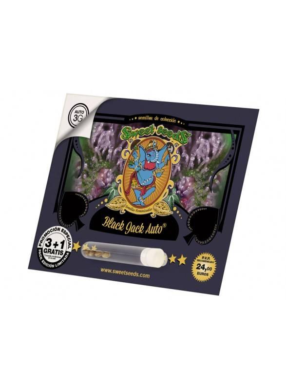 Black Jack Auto (5)