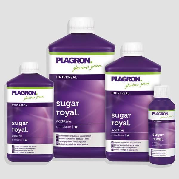Plagron Sugar Royal (Varios)