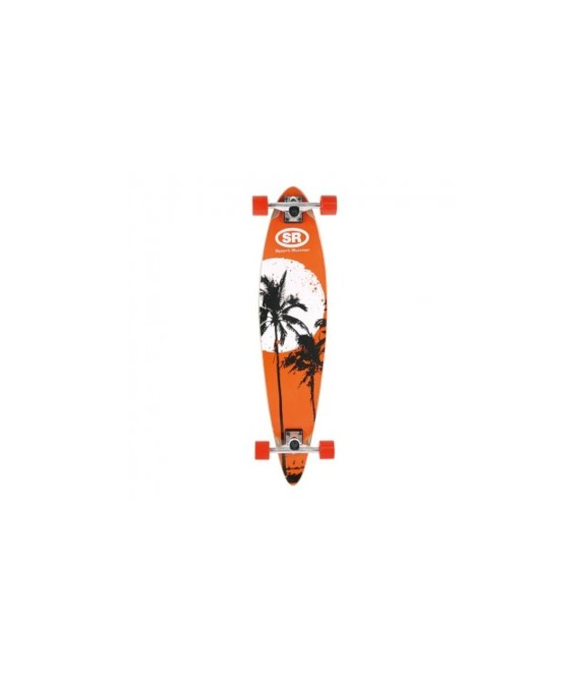 Basic Skateboard Longboard Hout