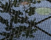 pond nets