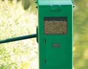 Automatic feeder