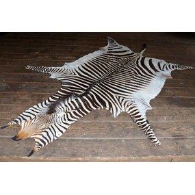 Zebrahuid