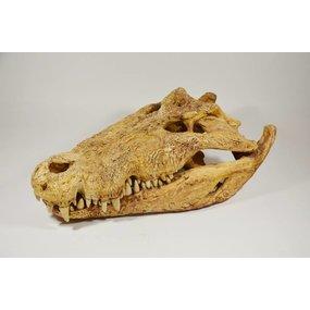 Afgietsel krokodil