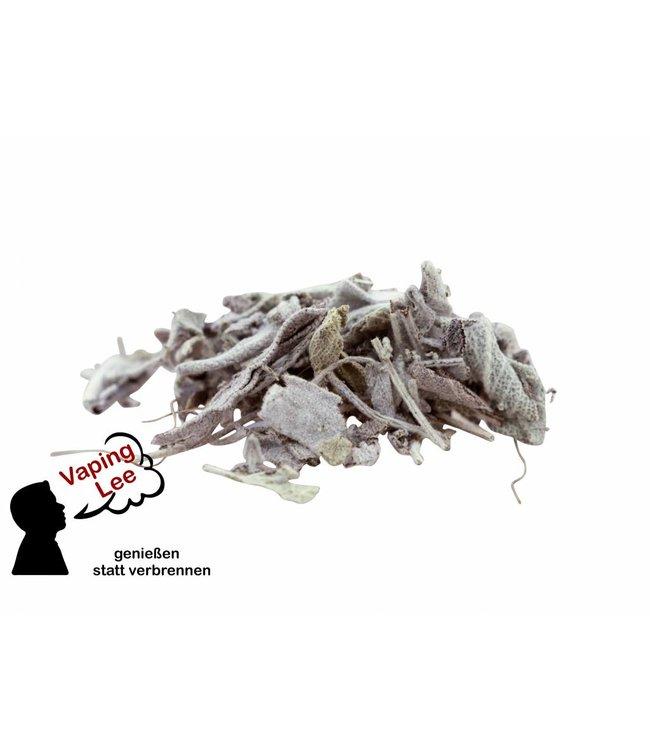 20 Gramm Salbei (Bioqualität)
