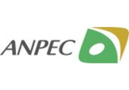 ANPEC Electronics Inc.