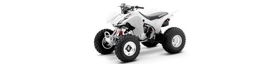 TRX 300X
