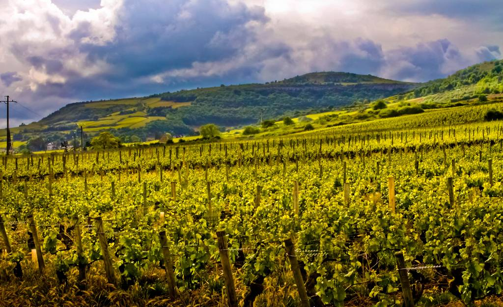 Fascinerend Bourgogne