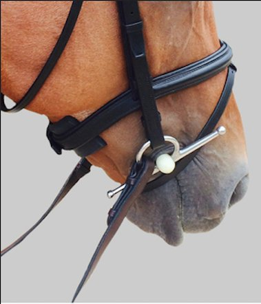 ThinLine Chin Poll  Noseband Guard