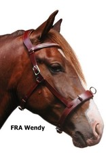 F.R.A. Cavesson Wendy