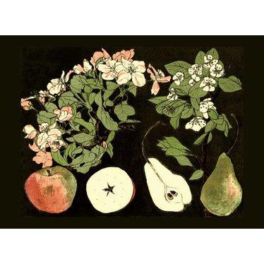 Apples & Pears, Magnet