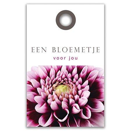 Bloemen- & Kadokaartjes Balance - Een bloemetje voor jou