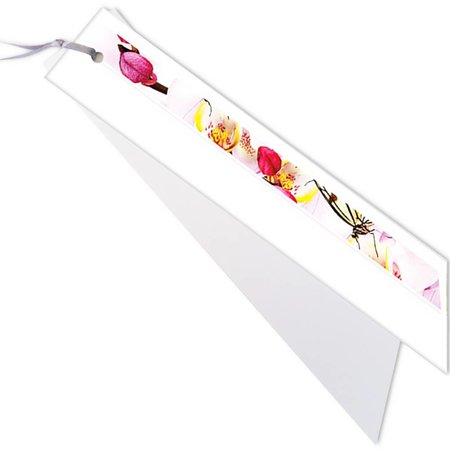 Emotions Emotions kleine ribbon - Pink - Blanco