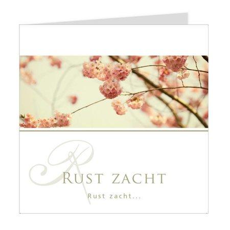 Emotions Emotions Quatro - Cherry blossom - Rust zacht
